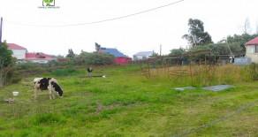 Terrain 500 m2 Plaine des cafres